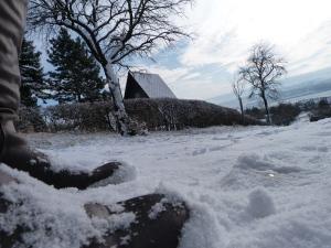 Schneestiefel