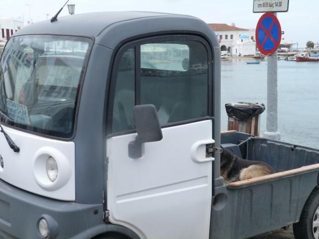 Smarttransporter
