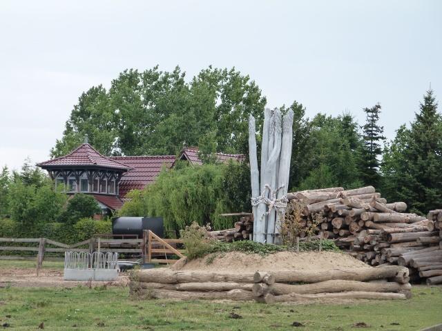 verholzter Spargel