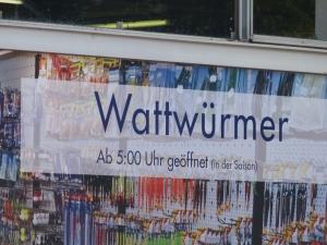 Watt?
