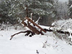Witze schnee Schneewitze